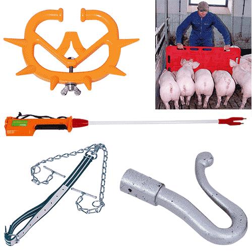 Vezivanje i kontrola životinja